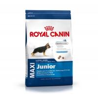 Royal Canin Maxi Junior 10 kg