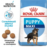 Royal Canin Maxi Junior, 15kg