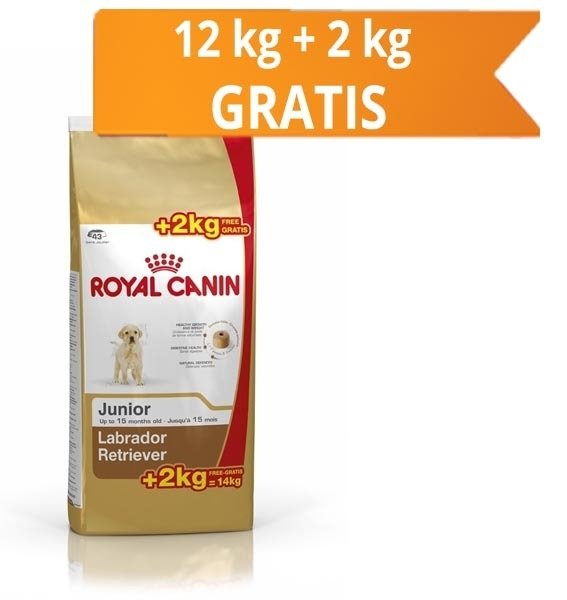Royal Canin Labrador Retriever Junior, 12 Kg + 2 Kg Gratis