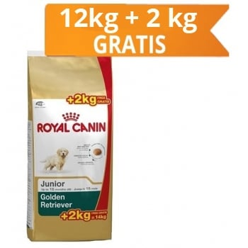 Royal Canin Golden Retriever Junior, 12 Kg + 2 Kg Gratis
