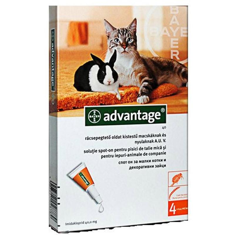 Advantage Pisica/Iepure 40, 4 pipete