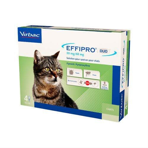 Effipro Duo Pisica, 4 pipete