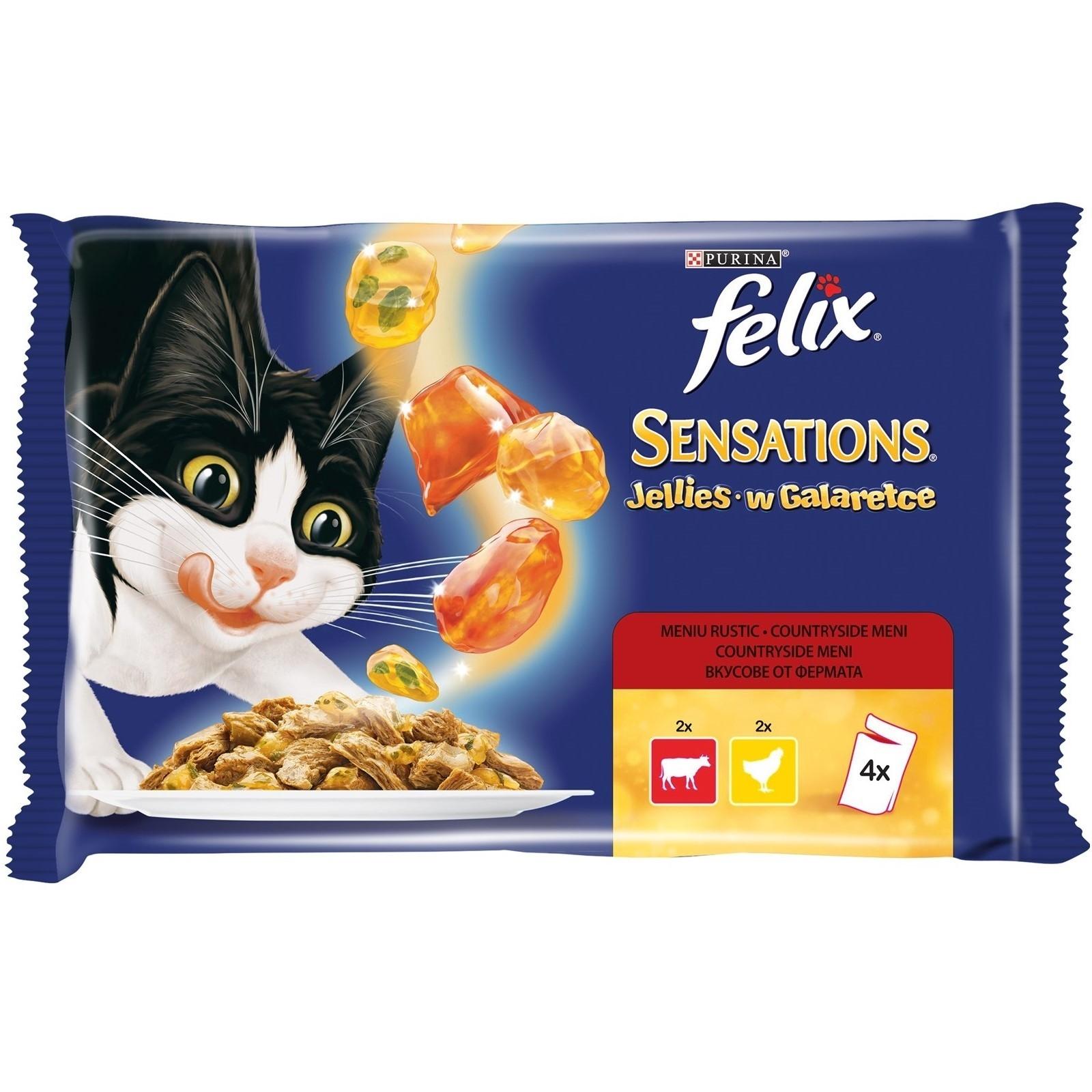Hrana Umeda pentru Pisici, Felix Sensations Gelees Multipack Vita si Pui, 4x100g