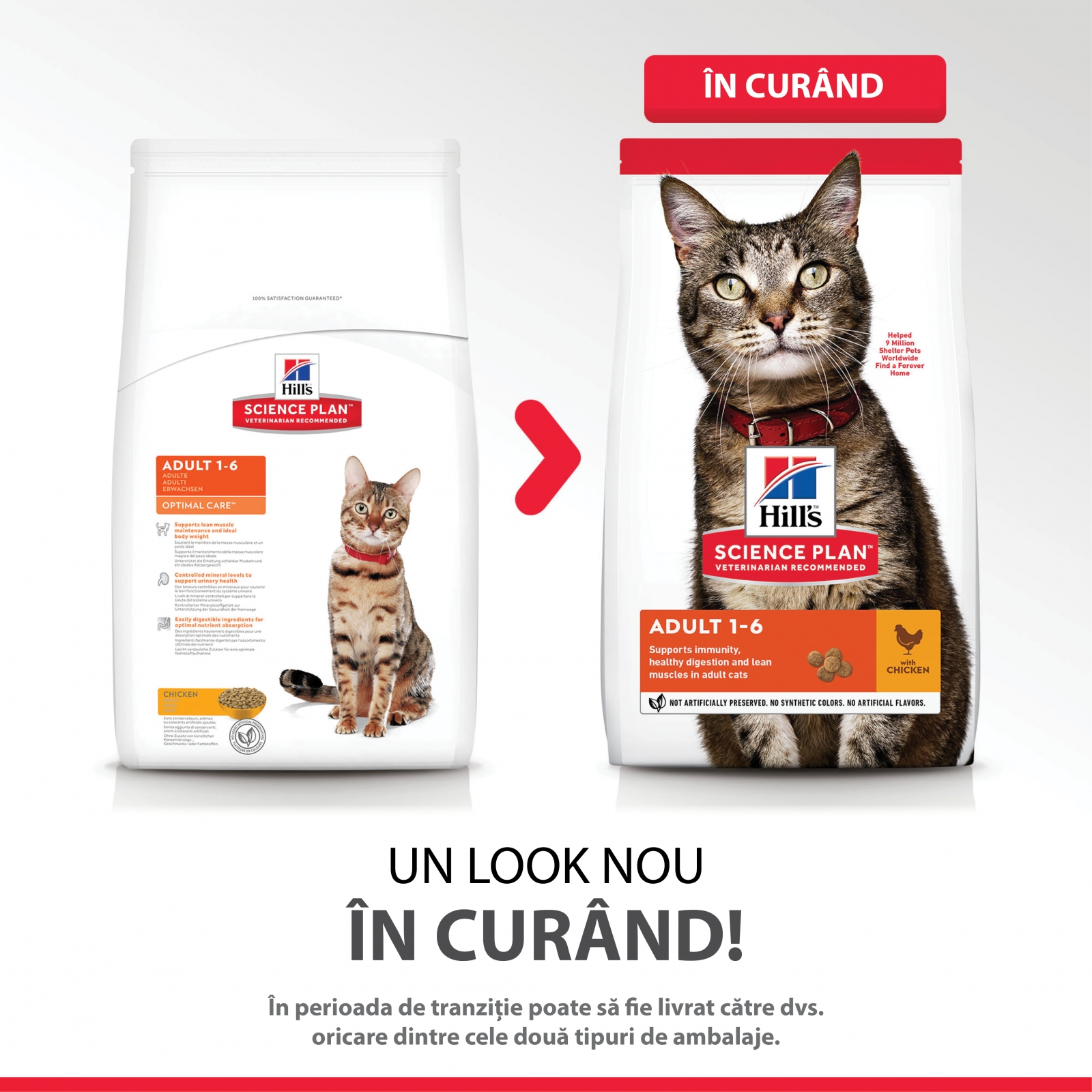 Hill's Science Plan Feline Adult Pui, 10 Kg
