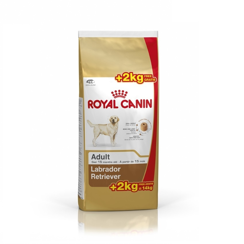Royal Canin Labrador Retriever Adult, 12 Kg + 2 Kg Gratis