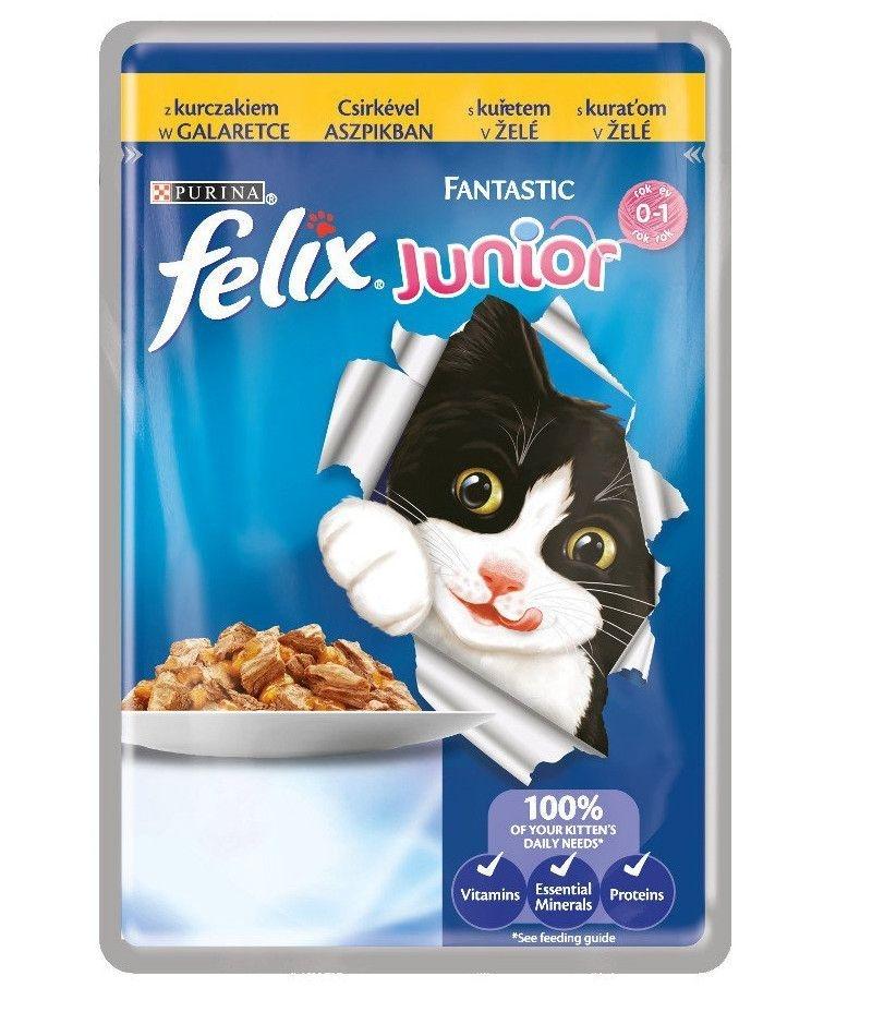Felix Fantastic Junior cu Pui, Plic 100 g