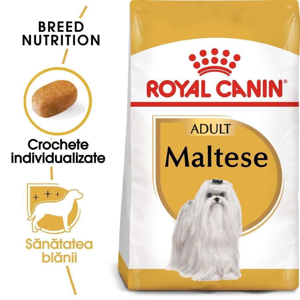 Royal Canin Bichon Maltese Adult, 1.5 kg