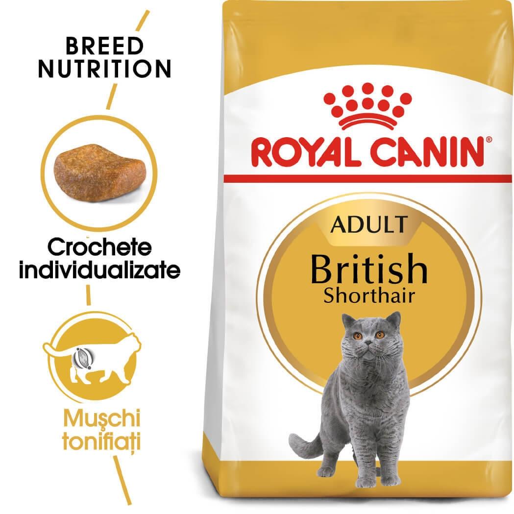 Royal Canin British Shorthair Adult, 10 kg