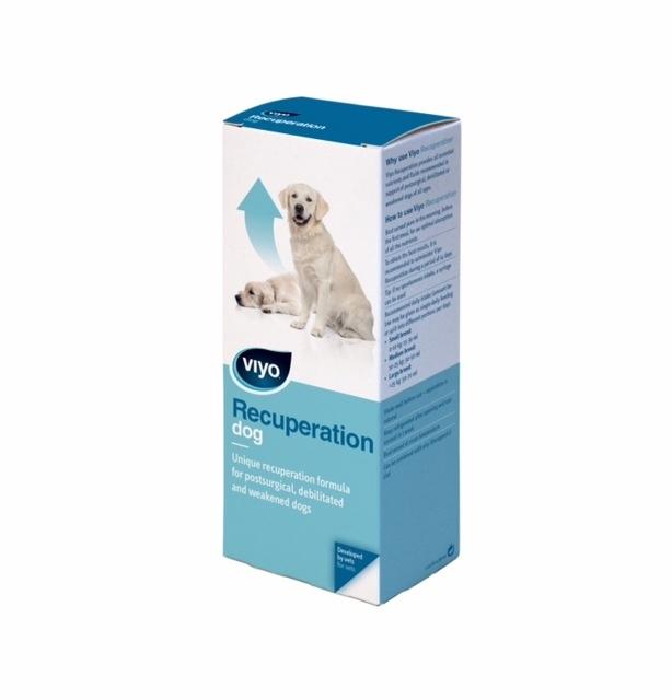 Viyo Recuperation Dog, 150 ml